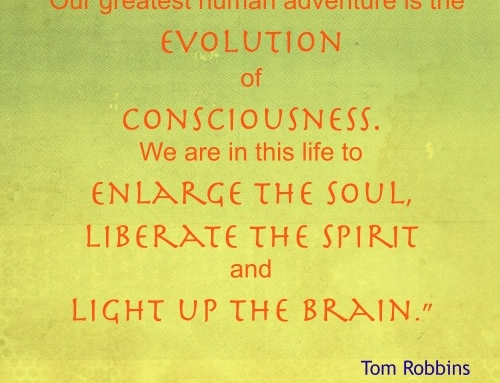 Our great human adventure of consciousness.