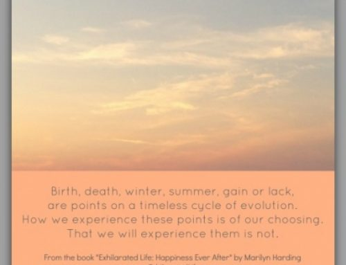 #66 Excerpt from Exhilarated Life