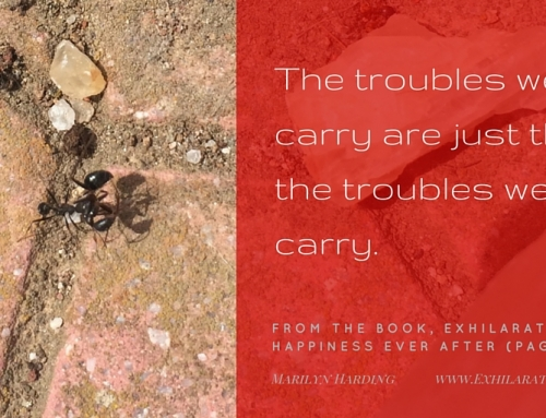 The Troubles We Carry